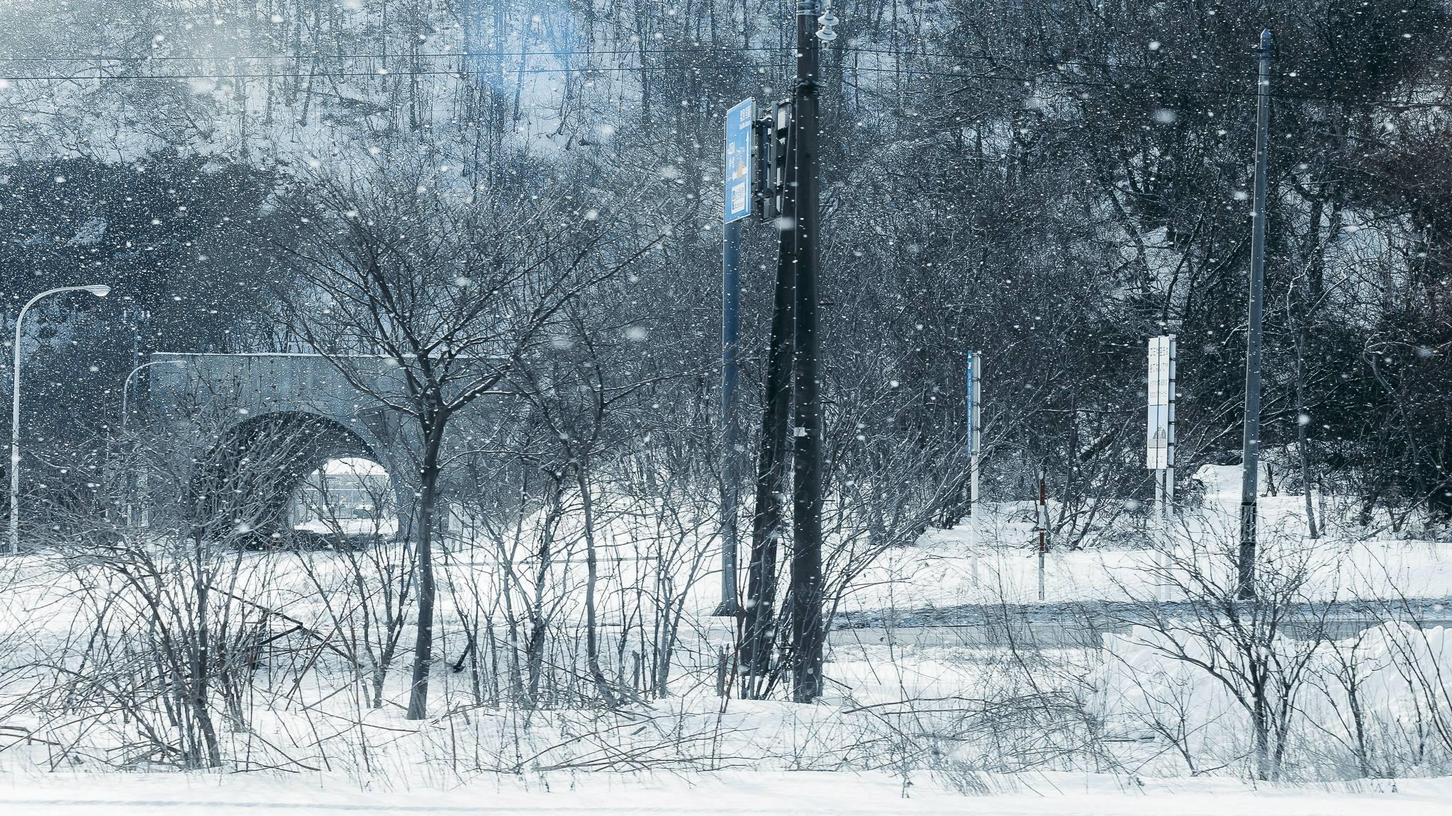 Hokkaido tuyet trang, noi dang den nhat mua dong o Nhat Ban hinh anh 2