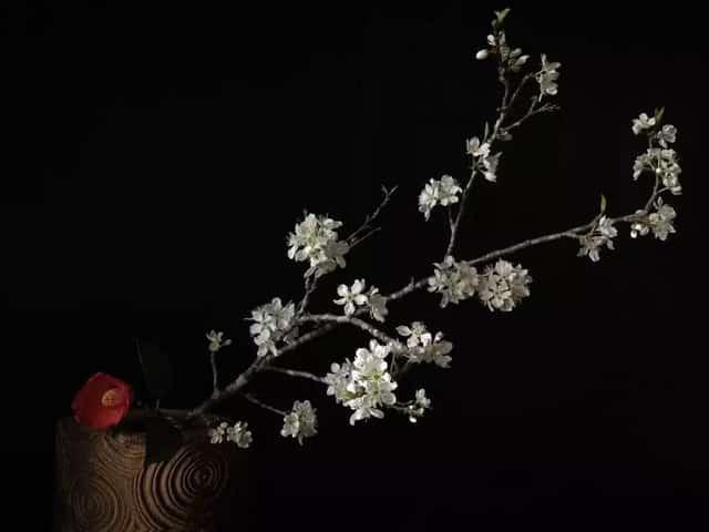 Sau 10 năm ẩn dật, người phụ nữ Nhật Bản trở thành kho báu quốc gia khi được mọi người mệnh danh là bậc thầy cắm hoa - Ảnh 21.